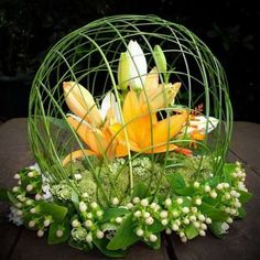 so the arrangement needs help- but the caging is great! so the arrangement needs help- b Unique Flower Arrangements, Ikebana Flower Arrangement, Unique Flowers, Flower Centerpieces, Flower Decorations, Beautiful Flowers, Big Flowers, Wedding Flowers, Deco Floral