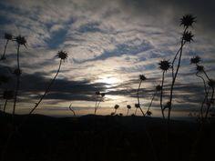 Sierra de San Vicente (Toledo) - Amaneceres...