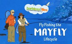 Fly Fishing the Mayfly Lifecycle [Infographic] - Barbless Flies