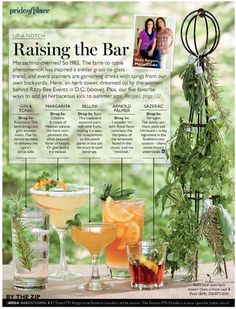 summer drinks by the ritzy bee girls