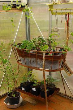 Ruusunmekko garden's greenhouse 'Verstas' in May 2015