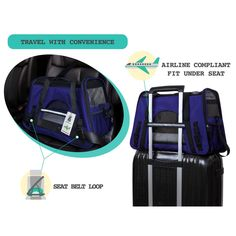 PetAmi Premium Airline Approved SoftSided Pet Travel Carrier by Ventilated Comfortable Design with Safety Features  Ideal for Small to Medium Sized Cats Dogs and Pets Small Royal Blue -- Click the photo for extra information. (This is an affiliate link). Pet Travel Carrier, Cat Carrier, Pet Supplies, Royal Blue, Dog Cat, Safety, Pets, Medium, Link
