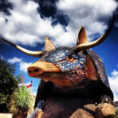 Home is where the big armadillo is.