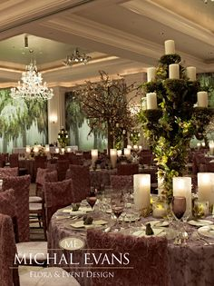 Michal Evans, Michael Evans, Bouquet, Boutonniere, Bridal, Bride, Centerpiece, Chuppah, Decor, Events, Engagement, Floral, Flowers, Invitation, Jewelry, Mitzvah, Ring Bearer, Stationary, Party, Photographer, Planner, Wedding, Wedding Production. Atlanta History Center, The Biltmore, Callanwolde, Capital City Club, Cherokee Town Club, Four Seasons, Grand Hyatt, Intercontinental Hotel, The Mandarin, Piedmont Driving Club, Ritz Carlton, St. Regis, Swan House, 103 West, 200 Peachtree.