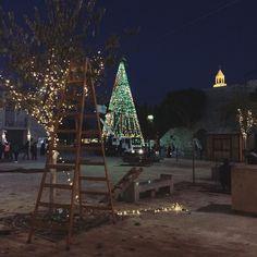 Belém se preparando pro natal. #Palestina by papacapim_sandra