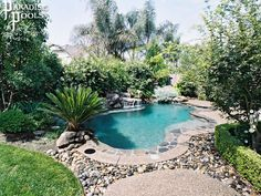 Rocks and plants for area around the pool | Wanna be inspired house |  Pinterest | Plants, Gardens and Backyard