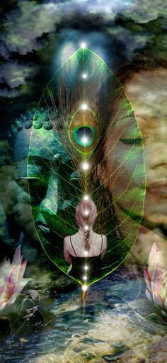 Ascension raise your frequency, make the connections, open the gates, create your portals with love... and rise❤