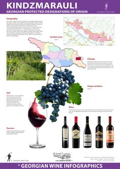 Kindzmarauli - Georgian Wine Infographics (30) | Marani