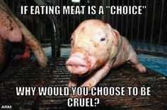 if eating meat is a choice, why would you choose to be cruel? go #vegan for cruelty-free living