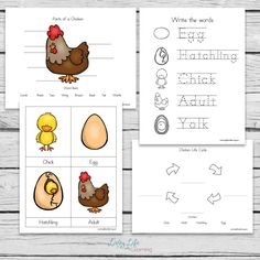 Chicken Life Cycle Worksheets for Kids Hatching Chickens, Baby Chickens, Life Cycle Craft, Farm Lessons, Science Experiments For Preschoolers, Chicken Crafts, Chicken Life, Have Fun Teaching, Alphabet For Kids