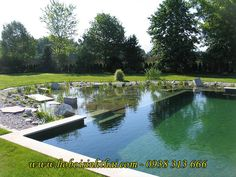 Natural Swimming Ponds (NSPs) Let nature clean the water. natural pool Chemical-free water garden and swimming pool. The plant portion, or regeneration zone, is separated from the swimming area by the wall Swimming Pool Pictures, Natural Swimming Ponds, Small Swimming Pools, Natural Pond, Swimming Pools Backyard, Pool Spa, Swimming Pool Designs, Pool Landscaping, Au Natural