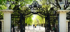 Schonbrunn Palace Garden Walk photo Vienna, Austria --- how many times have i walked through this gate ? Palace Garden, Porche, Austro Hungarian, Places To See, Places Ive Been, Pilgrimage, Beautiful World, Budapest, Around The Worlds