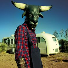 Mothmeister. Wounderland: Surreal World Of Imagination, Nightmares And Taxidermy | Bored Panda