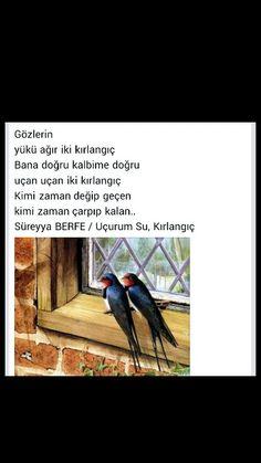 Gözlerin Yükü ağır iki kırlangıç .... Süreyya Berfe Karma, Literature, Literatura