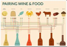 Great Wine-Pairing Infographic! Check it out