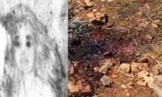 Πανελλήνιος αποτροπιασμός από το έγκλημα στα Λιμανάκια-Τον χτύπησαν, του έβαλαν φωτιά και ύστερα... άναψαν τσιγάρο