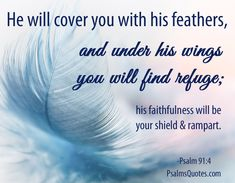Psalm 91:4 - Faith Bible Verse
