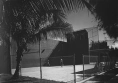 Lsquash.jpg 700×493 pixeles