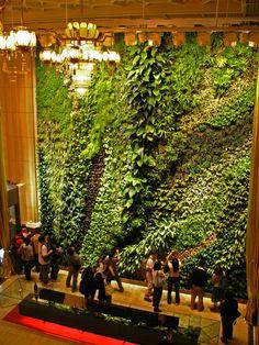 Una historia de los jardines verticales de viñas simples a sistemas hidropónicos - Land8