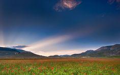 умбрия, италия, маки, свет, небо, поле