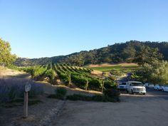 Clos la Chance Winery  Morgan Hill, California
