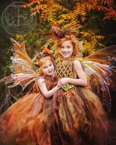 Fall fairy, woodland fairy, Fairy ware, princess, wedding, photography, costume,party ware