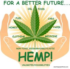 For a Better Future, Hemp