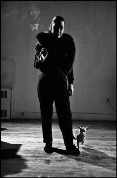 Dennis Stock - Billie Holiday, 1958              In almost every casual shot of Billie she has a dog. god bless her--she died too soon