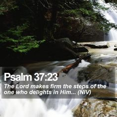 Bible SMS - Free Daily Bible Texts