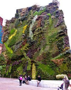 Vertical Gardens and Living Walls - Garden Walls - The Daily Green