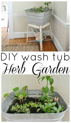 DIY wash tub herb ga