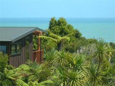 Punakaiki Wharepuni Paparoa Accommodation Self contained cottages on the West Coast - the heart of Paparoa National Park 6956795 Beach Houses For Rent, South Island, West Coast, Canopy, New Zealand, National Parks, Tropical, Cottage, Gallery