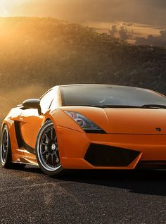Lamborghini Gallardo- have fun driving one, you know who you are