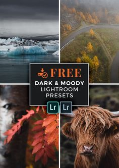 FREE Lightroom Presets for Dark and Moody Landscape Photography