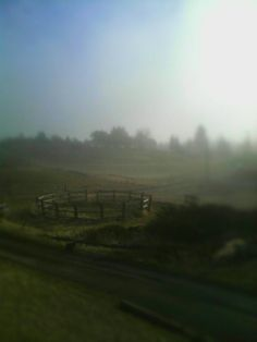View from my window...fog