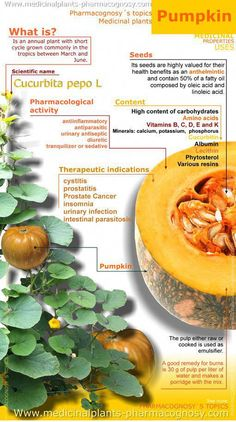 Nutrition - Healthy Eating : Pumpkin benefits - All Fitness Herbal Remedies, Health Remedies, Natural Remedies, Health And Nutrition, Health And Wellness, Health Tips, Vegetable Nutrition, Health Foods, Pumpkin Benefits