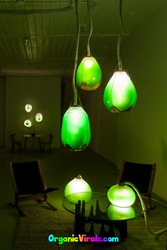 "Awesome Living Algae Lamps Produce Food, Heat, AND Light! - Innovative designers have successfully harnessed the power of micro-algae, which operates as an effective ""liquid plant,"" and developed a photosynthetic lamp filled with tiny, edible bacteria that doubles as a luminous light source. #algae #lamps #livingroomideas #livingroomdecor"