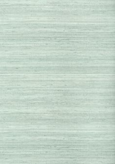 WILD SILK, Aqua, T339, Collection Texture Resource 6 from Thibaut