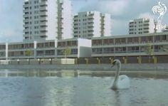 Postwar British architecture, brutalism, modernism, design and social history from John Grindrod, author of Concretopia. British Architecture, Modern Architecture, Postwar, Concrete Design, Soviet Union, Brutalist, Modern Buildings, Nostalgia, London