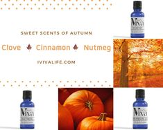 Autumn Essential Oil Trio, Fall Diffusion Set, 3 Essential Oils for Fall, October Aromas Fall Essential Oils, Cinnamon Essential Oil, Patchouli Essential Oil, Essential Oil Perfume, Therapeutic Grade Essential Oils, Essential Oil Diffuser, Pheromone Perfume, Tea Tree Soap, Glass Dropper Bottles