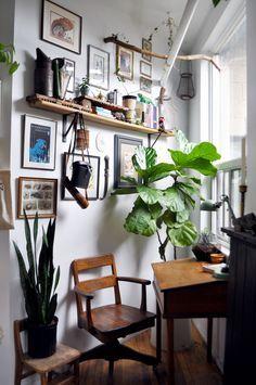 40+ Plants Fill This Coupleu0027s 500 Square Foot Studio U2014 House Call Square