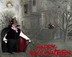 """Count Tom"" in Happy Halloween from www.TheTomCatLife.com"