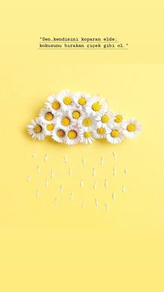 Cool Words, Stud Earrings, Letters, Wallpaper, Quotes, Beautiful, Quotations, Studs, Wallpapers