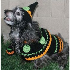 Free Dog's Witch Costume Crochet Pattern