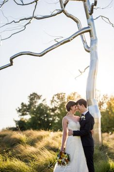 North Carolina – North Carolina Museum of Art History Museum, Art Museum, Perfect Wedding, Fall Wedding, Museum Wedding Venues, Maritime Museum, Outdoor Sculpture, Natural History, Real Weddings