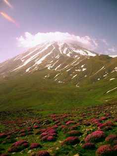 Mount Damavand - The beauty of Nature