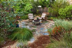 Save water – Remove that lawn !