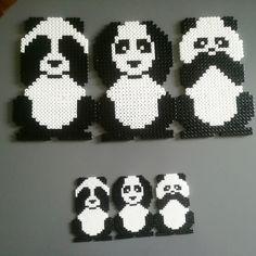 Animals its pandas love like