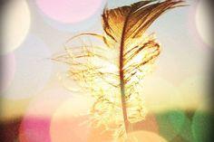 ♥ De Coração a Coração ♥energia  neutra