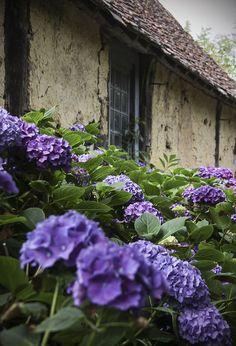 Le temps qui passe dans le jardin d'Eugénie, rockchickana:   le Château - garden by Kotomi_ on...
